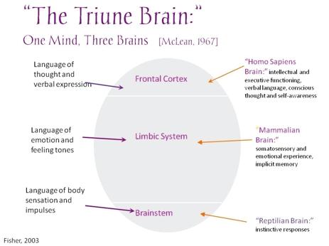 TriuneBrain